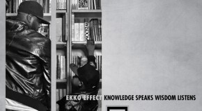 Knowledge Speaks – Ekko Effect